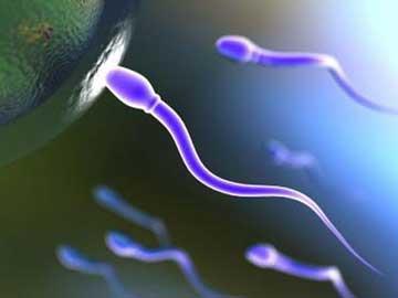 اسپرم سالم,ناباروری مردان,درمان ناباروری مردان