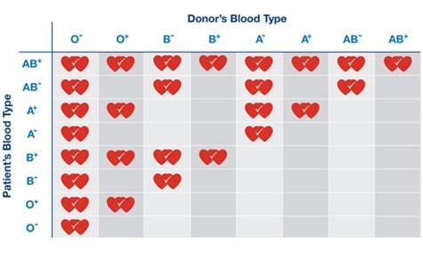 ازدواج گروه خونی های مختلف با یکدیگر