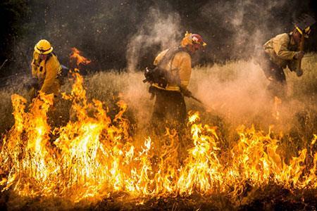 عکسهای جالب,تصاویر دیدنی,آتشنشانان