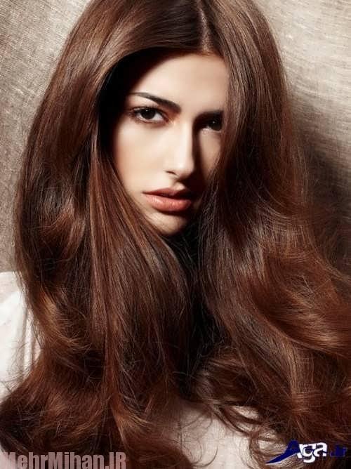 طرزتهیه رنگ موی طبیعی قهوه ای تیره
