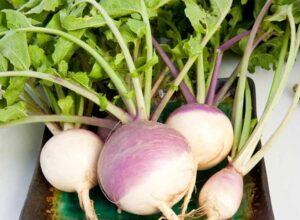 خواص شلغم برای سلامتی و چند روش برای طبخ و خوردن آن