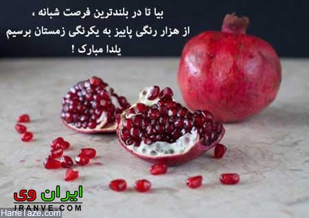 دانلود عکس پروفایل برای شب یلدا