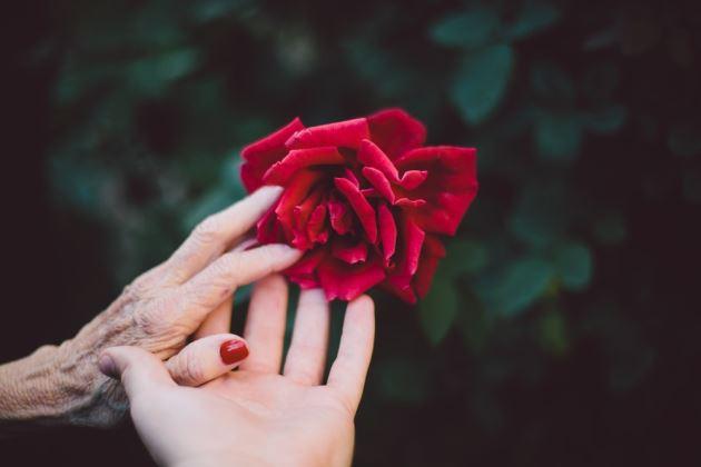 عکس پروفایل عاشقانه مادر و دختر با گل رز