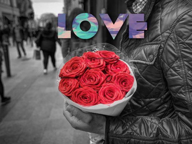 عکس پروفایل عاشقانه دسته گل رز قرمز