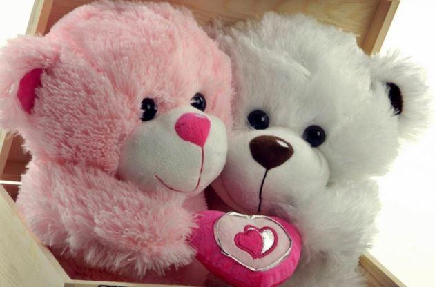عکس پروفایل عاشقانه دوتا خرس سفید و صورتی