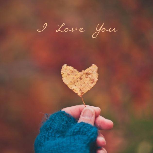 برگ زرد پاییزی به شکل قلب در دست دختر