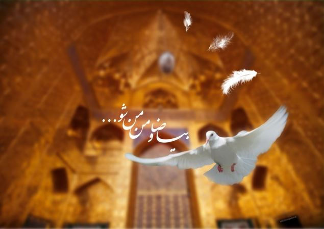 عکس پروفایل امام رضا , عکس پروفایل تبریک تولد امام رضا