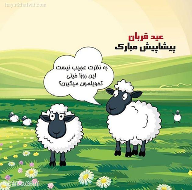 عکس پروفایل عید قربان مبارک باد گلچین پیام نوشته متن تبریک شاد