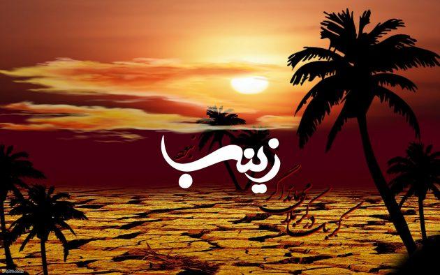 عکس حضرت زینب محرم