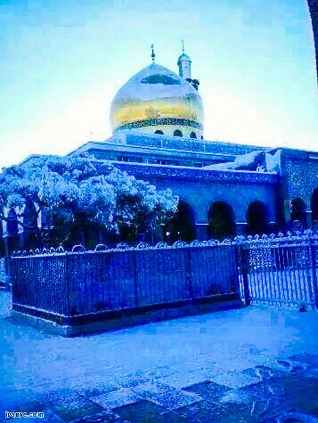 عکس پروفایل حرم حضرت زینب شب ولادت