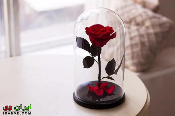 عکس های دسته گل ولنتاین خوشگل