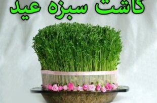 طرز کاشت سبزه عید