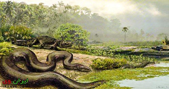 تیتانوبوآ در 50 میلیون سال پیش زندگی میکرده است