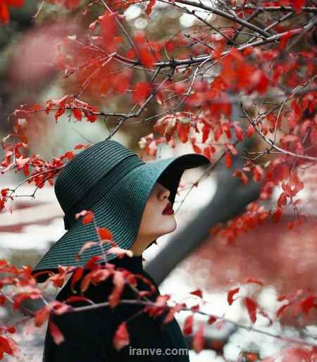 پروفایل دخترونه دختر عاشق زیر درخت با برگ های قرمز با کلاه مشکی روی سرش