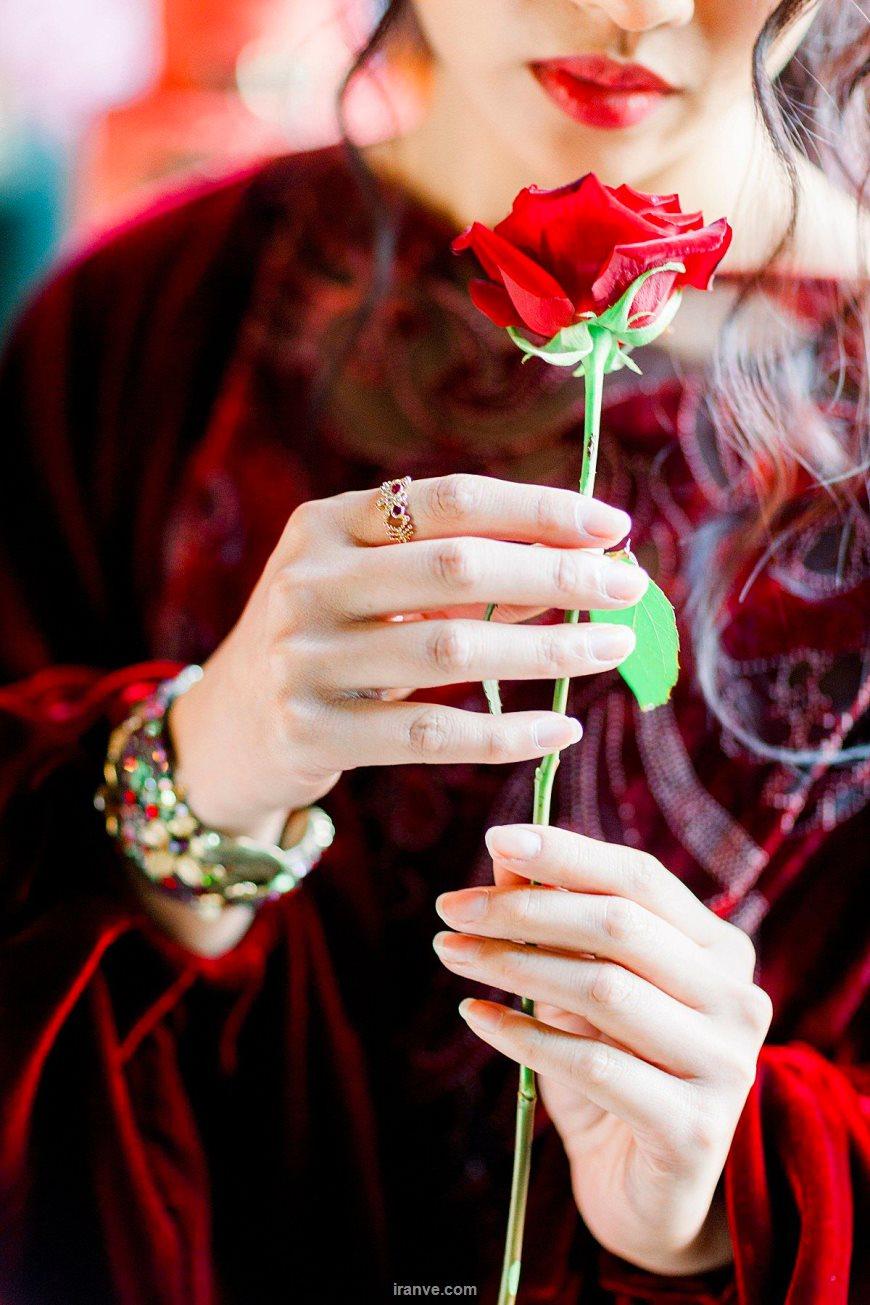 عکس پروفایل دخترونه شاخه گل رز در دست و پیدا نبودن صورت