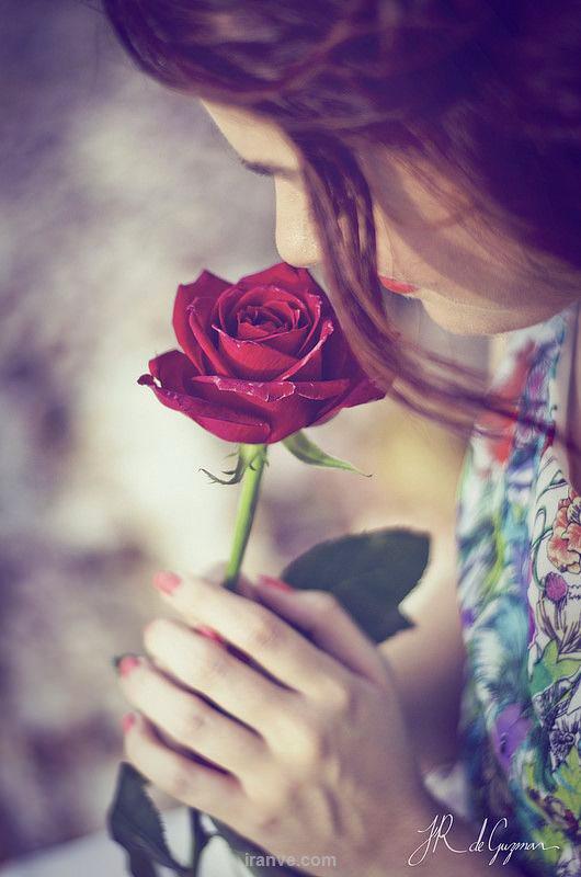 عکس پروفایل دخترونه بو کردن گل رز قرمز دختری که چهره اش پیدا نیست