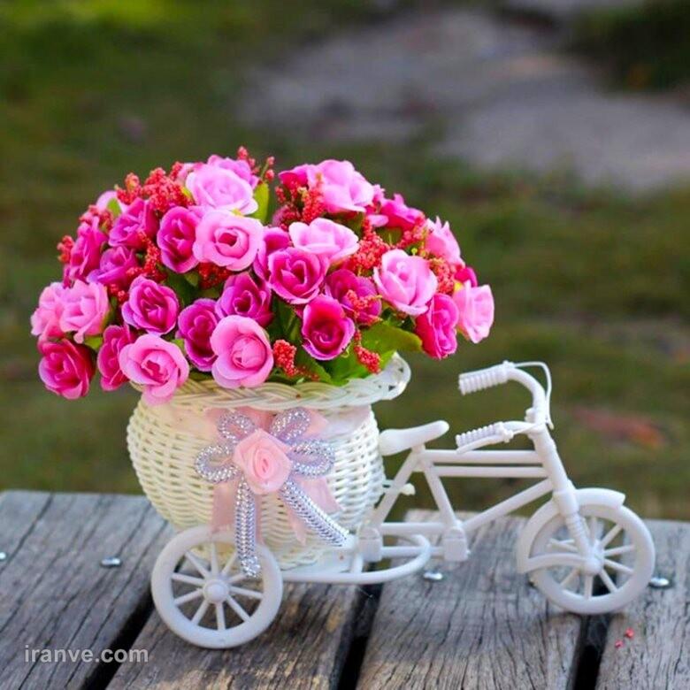 عکس پروفایل گل فانتزی