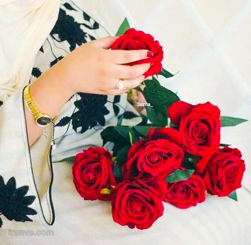 عکس پروفایل گل فیروزه ای