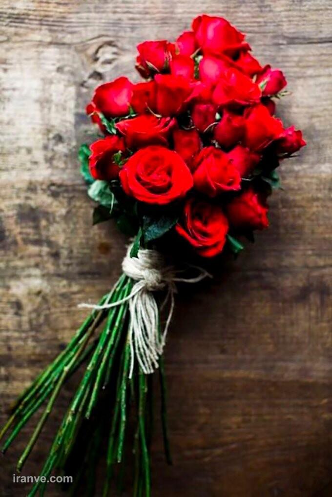 عکس گل فانتزی برای پروفایل