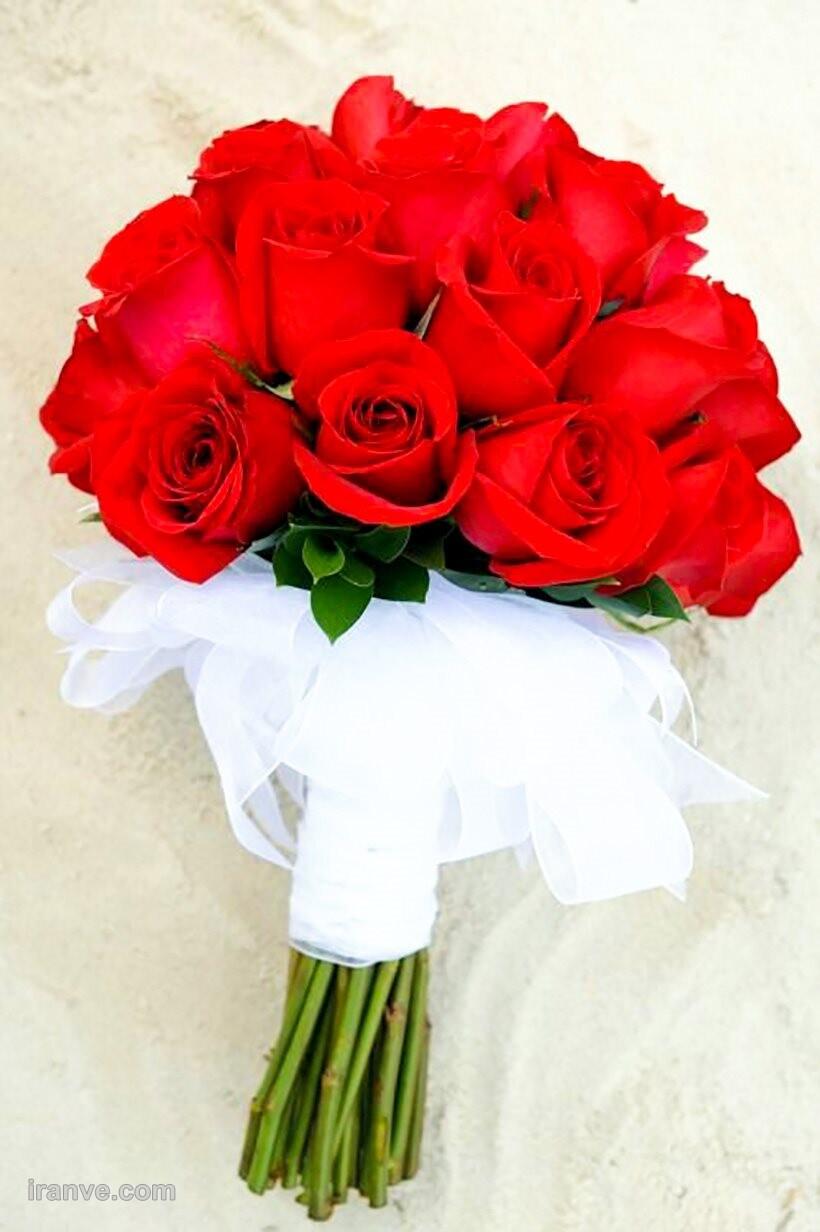 عکس پروفایل فاطما گل
