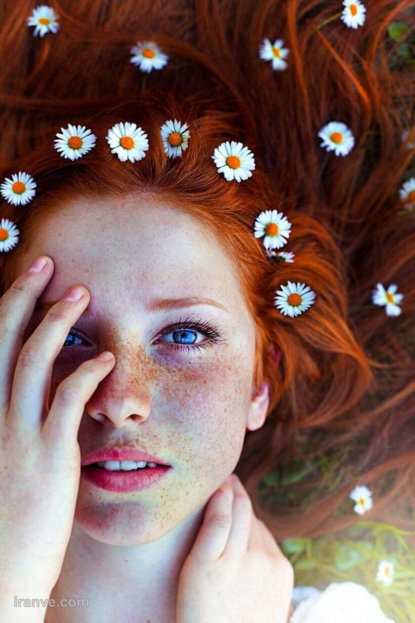 عکس پروفایل گل سوسن