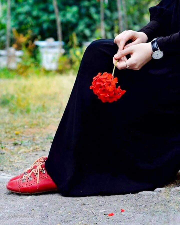 عکس پروفایل گل های زیبای جهان