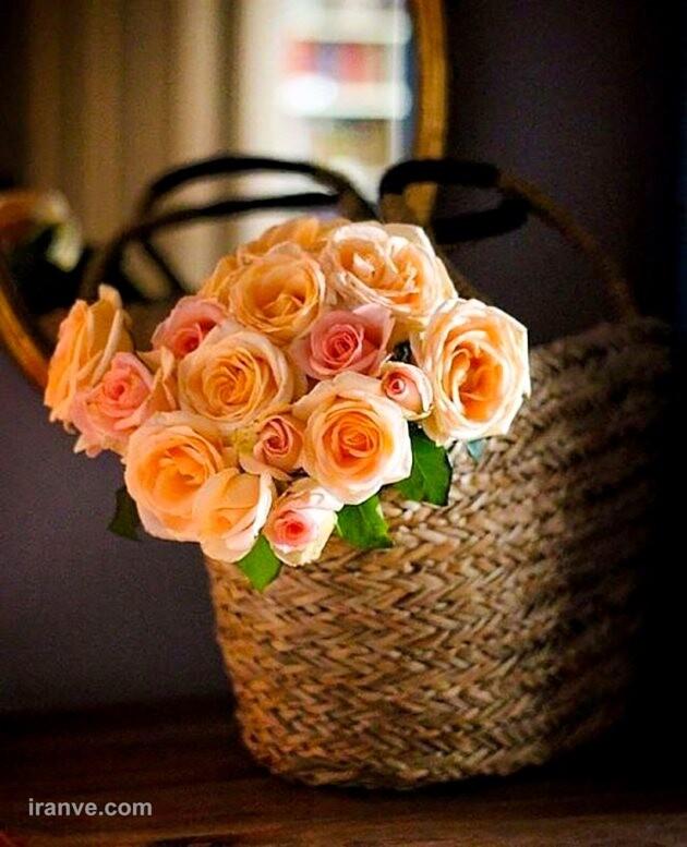 عکس پروفایل گل عشق