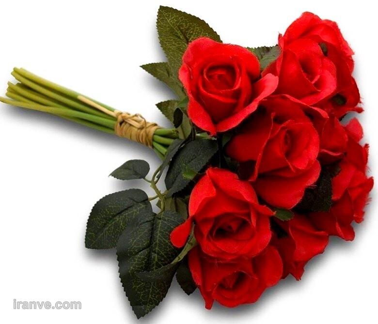 عکس پروفایل گل جعبه ای